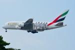 RUSSIANSKIさんが、シンガポール・チャンギ国際空港で撮影したエミレーツ航空 A380-861の航空フォト(飛行機 写真・画像)