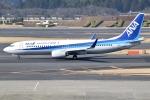 アボさんが、成田国際空港で撮影した全日空 737-881の航空フォト(写真)