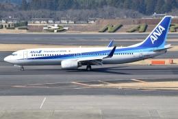 アボさんが、成田国際空港で撮影した全日空 737-881の航空フォト(飛行機 写真・画像)