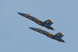 小弦さんが、フォックス飛行場で撮影したアメリカ海軍 F/A-18A Hornetの航空フォト(飛行機 写真・画像)