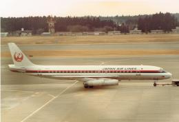 JA8037さんが、成田国際空港で撮影した日本航空 DC-8-62の航空フォト(飛行機 写真・画像)