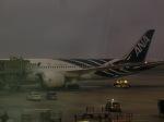 tamonさんが、クアラルンプール国際空港で撮影した全日空 787-8 Dreamlinerの航空フォト(写真)
