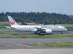 鷹71さんが、成田国際空港で撮影した日本航空 787-8 Dreamlinerの航空フォト(写真)