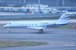 tsubasa0624さんが、羽田空港で撮影した中国企業所有 G350/G450の航空フォト(飛行機 写真・画像)