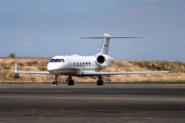 tsubasa0624さんが、羽田空港で撮影したARGリネア・プリバーダ・アルゼンチン G350/G450の航空フォト(飛行機 写真・画像)