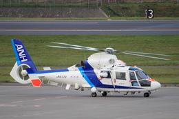 WINGさんが、女満別空港で撮影したオールニッポンヘリコプター AS365N2 Dauphin 2の航空フォト(写真)