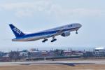 パンダさんが、函館空港で撮影した全日空 777-281の航空フォト(写真)