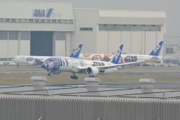 シュウさんが、羽田空港で撮影した全日空 787-9の航空フォト(写真)