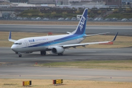 uhfxさんが、伊丹空港で撮影した全日空 737-881の航空フォト(飛行機 写真・画像)