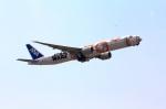 杉の裏さんが、伊丹空港で撮影した全日空 777-381/ERの航空フォト(飛行機 写真・画像)