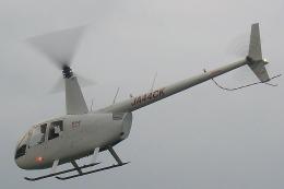 熊本県 で撮影された熊本県 の航空機写真