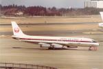 JA8037さんが、成田国際空港で撮影した日本航空 DC-8-62Hの航空フォト(写真)