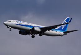 hirohiro77さんが、新千歳空港で撮影した全日空 737-881の航空フォト(飛行機 写真・画像)