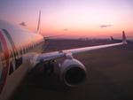 WINGさんが、羽田空港で撮影したJALエクスプレス 737-846の航空フォト(写真)