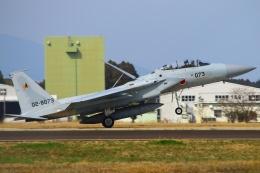 航空フォト:02-8073 航空自衛隊 F-15DJ Eagle
