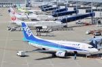 ハピネスさんが、中部国際空港で撮影したANAウイングス 737-54Kの航空フォト(写真)