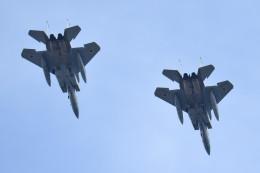 tsubasa0624さんが、熊谷基地で撮影した航空自衛隊 F-15J Eagleの航空フォト(飛行機 写真・画像)