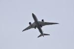 romyさんが、ボーイングフィールドで撮影した全日空 787-8 Dreamlinerの航空フォト(写真)