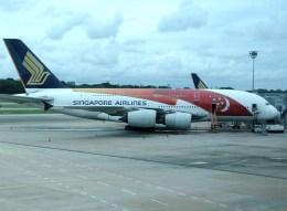 ぺペロンチさんが、シンガポール・チャンギ国際空港で撮影したシンガポール航空 A380-841の航空フォト(飛行機 写真・画像)