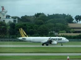 ぺペロンチさんが、シンガポール・チャンギ国際空港で撮影したタイガー・エアウェイズ A320-232の航空フォト(飛行機 写真・画像)