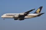 JA8961RJOOさんが、成田国際空港で撮影したシンガポール航空 A380-841の航空フォト(写真)