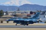 夏みかんさんが、名古屋飛行場で撮影した航空自衛隊 F-2Bの航空フォト(飛行機 写真・画像)
