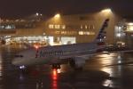 MA~RUさんが、成田国際空港で撮影したアメリカン航空 787-8 Dreamlinerの航空フォト(写真)