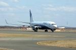 北の熊さんが、新千歳空港で撮影したノードスター航空 737-8ASの航空フォト(写真)