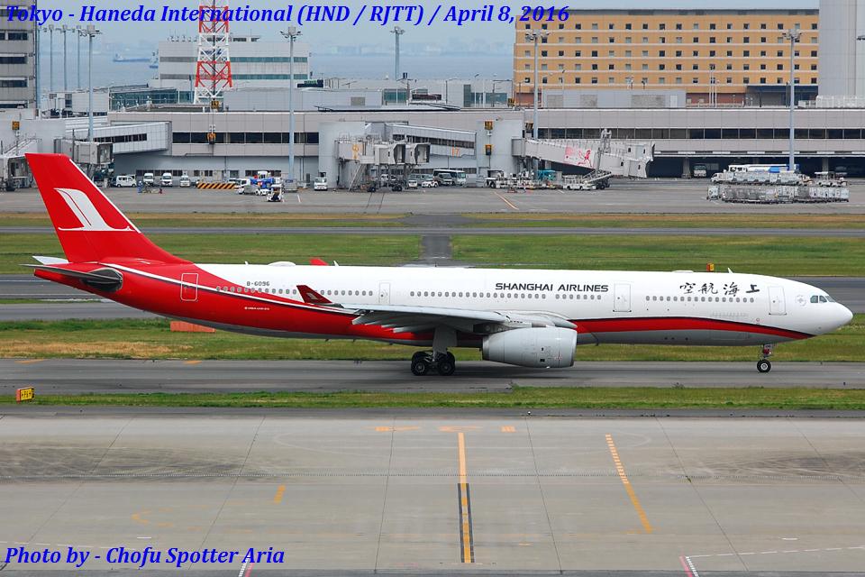 Chofu Spotter Ariaさんの上海航空 Airbus A330-300 (B-6096) 航空フォト