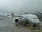Rsaさんが、フランクフルト国際空港で撮影した全日空 787-8 Dreamlinerの航空フォト(写真)