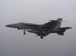 まさおみんさんが、厚木飛行場で撮影したアメリカ海軍 F/A-18E Super Hornetの航空フォト(写真)