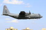 とらとらさんが、横田基地で撮影したアメリカ空軍 C-130H Herculesの航空フォト(飛行機 写真・画像)
