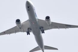 romyさんが、ボーイングフィールドで撮影した全日空 787-8 Dreamlinerの航空フォト(飛行機 写真・画像)