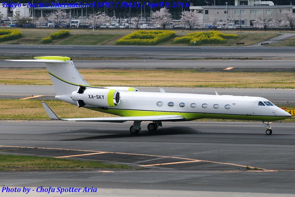 Chofu Spotter Ariaさんのメキシコ企業所有 Gulfstream G500/G550 (G-V) (XA-SKY) 航空フォト
