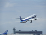 鬼の手さんが、新千歳空港で撮影した全日空 777-281の航空フォト(写真)