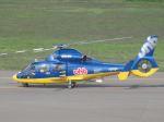 とらとらさんが、札幌飛行場で撮影した北海道航空 AS365N3 Dauphin 2の航空フォト(飛行機 写真・画像)