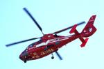サボリーマンさんが、高知空港で撮影した東京消防庁航空隊 AS365N2 Dauphin 2の航空フォト(写真)