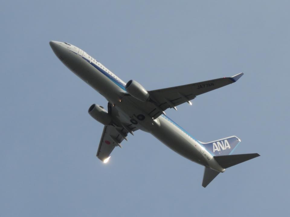 aquaさんの全日空 Boeing 737-800 (JA77AN) 航空フォト