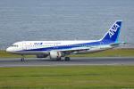 tsubasa0624さんが、羽田空港で撮影した全日空 A320-211の航空フォト(写真)