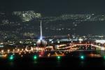 wtb11_ksさんが、伊丹空港で撮影した全日空 737-54Kの航空フォト(写真)
