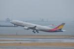 テッシーさんが、羽田空港で撮影したアシアナ航空 A330-323Xの航空フォト(飛行機 写真・画像)