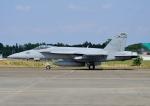 じーく。さんが、厚木飛行場で撮影したアメリカ海軍 F/A-18E Super Hornetの航空フォト(写真)