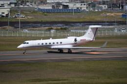 kumagorouさんが、仙台空港で撮影したアメリカ企業所有 G-V Gulfstream V-SPの航空フォト(写真)