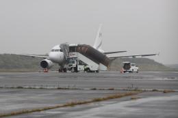 しかばねさんが、羽田空港で撮影したコムラックス・マルタ A319-115CJの航空フォト(飛行機 写真・画像)