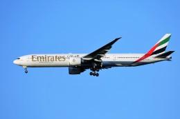 航空フォト:A6-EBY エミレーツ航空 777-300