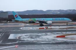 夏奈さんが、新千歳空港で撮影した大韓航空 777-3B5/ERの航空フォト(写真)