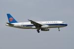 tsubasa0624さんが、成田国際空港で撮影した中国南方航空 A320-232の航空フォト(写真)
