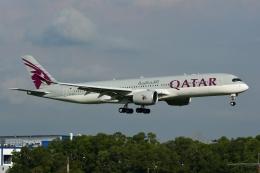 RUSSIANSKIさんが、シンガポール・チャンギ国際空港で撮影したカタール航空 A350-941XWBの航空フォト(写真)