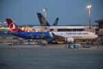 sky77さんが、成田国際空港で撮影したターキッシュ・エアラインズ A330-303の航空フォト(写真)