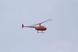 とらとらさんが、厚木飛行場で撮影した日本法人所有 R44 IIの航空フォト(飛行機 写真・画像)